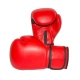 boxhandschuhe-individuell-bedruckt-rot